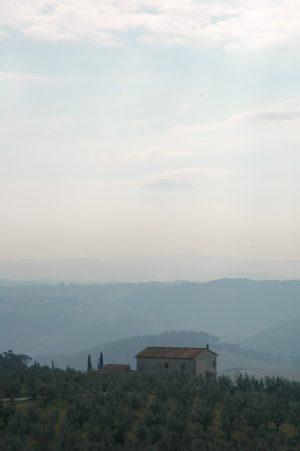 Artimino_A016