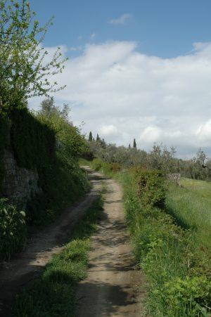Carmignano_A003