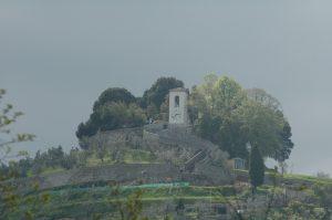 Carmignano_A012