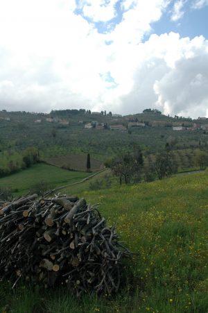 Carmignano_A015