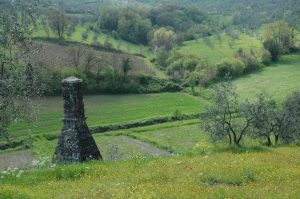Carmignano_A019