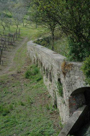 Carmignano_A026