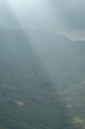 Carmignano_A047