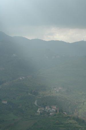 Carmignano_A048