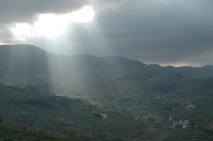 Carmignano_A056