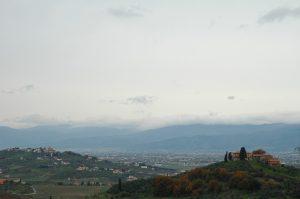 Carmignano_D003