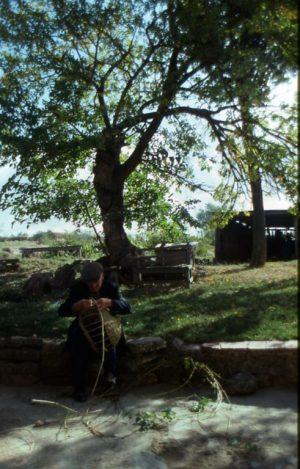 lavoro_contadino che intreccia_491x768
