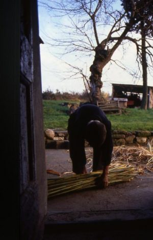 lavoro_preparazione dello steccato2_491x768