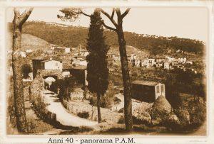 PAM019c